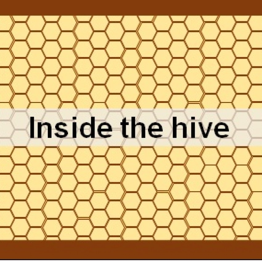 Inside the Hive